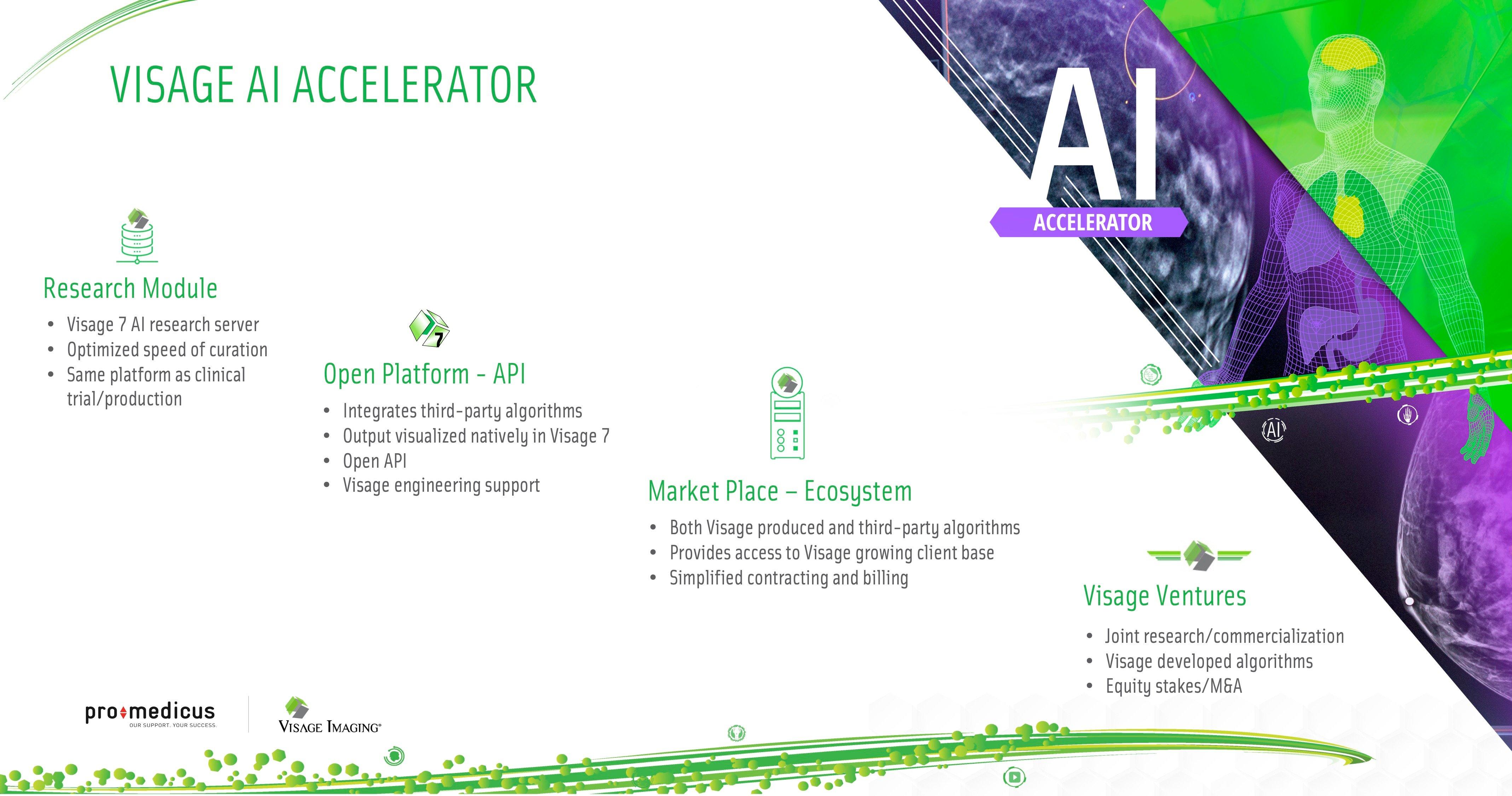 Visage AI Accelerator